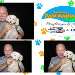 Sunflower Photo Booth Company - past event 22
